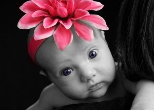 pink flower3
